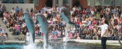Stürmische Wasser (Delfinarien in Duisburg und Nürnberg) SZ-Bericht